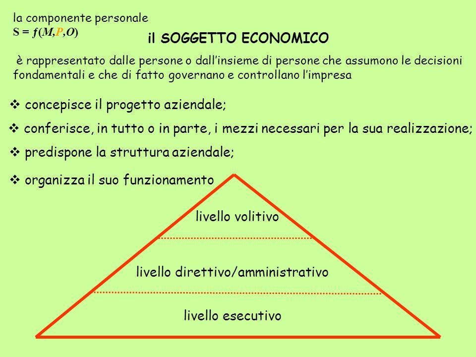 il SOGGETTO ECONOMICO è rappresentato dalle persone o dallinsieme di persone che assumono le decisioni fondamentali e che di fatto governano e control