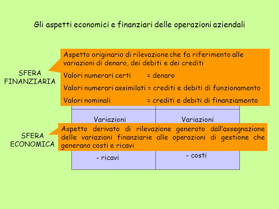SFERA FINANZIARIA SFERA ECONOMICA Variazioni finanziari attive + denaro + crediti - debiti Variazioni economiche attive + ricavi - costi Variazioni ec