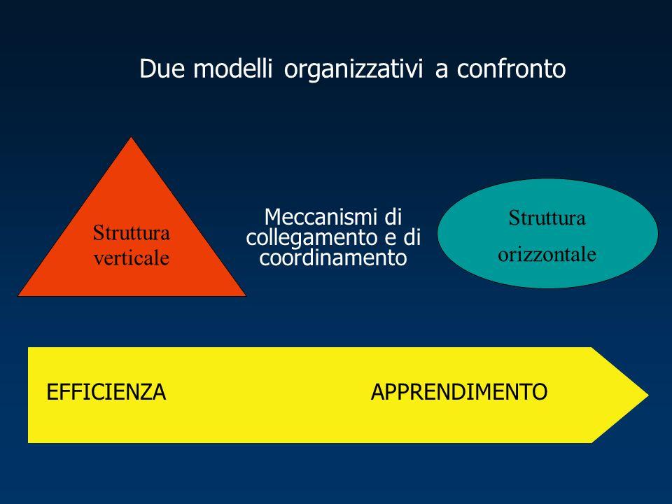 Struttura verticale Struttura orizzontale Meccanismi di collegamento e di coordinamento EFFICIENZAAPPRENDIMENTO Due modelli organizzativi a confronto