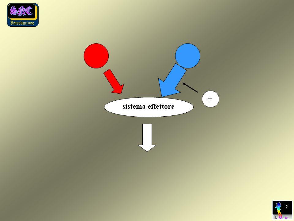 Introduzione 7 sistema effettore +