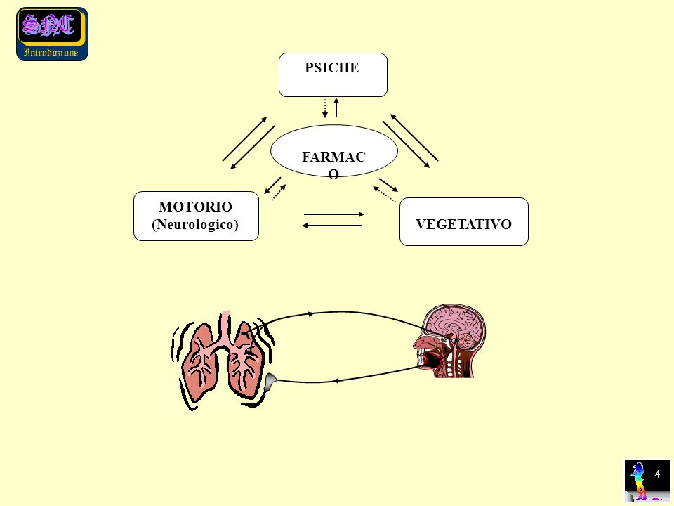 Introduzione 4 PSICHE MOTORIO (Neurologico) VEGETATIVO FARMAC O