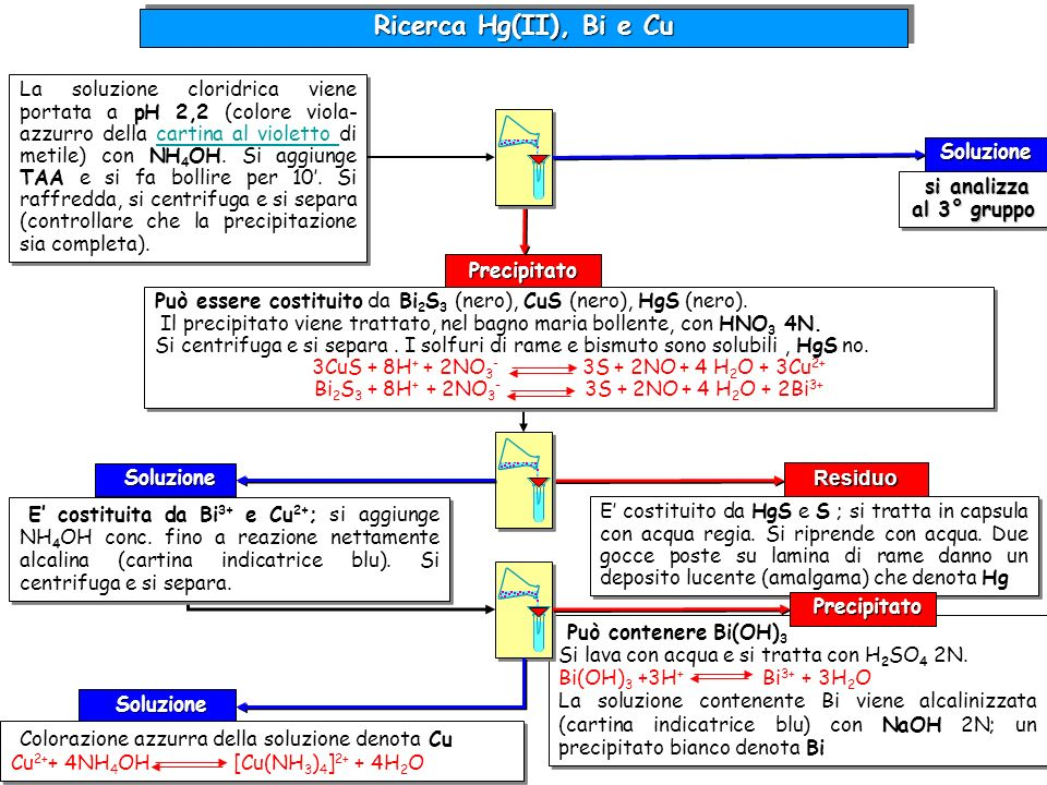 Può contenere Bi(OH) 3 Si lava con acqua e si tratta con H 2 SO 4 2N. Bi(OH) 3 +3H + Bi 3+ + 3H 2 O La soluzione contenente Bi viene alcalinizzata (ca