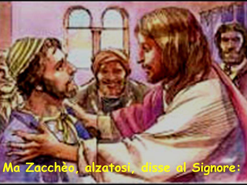 Ma Zacchèo, alzatosi, disse al Signore: