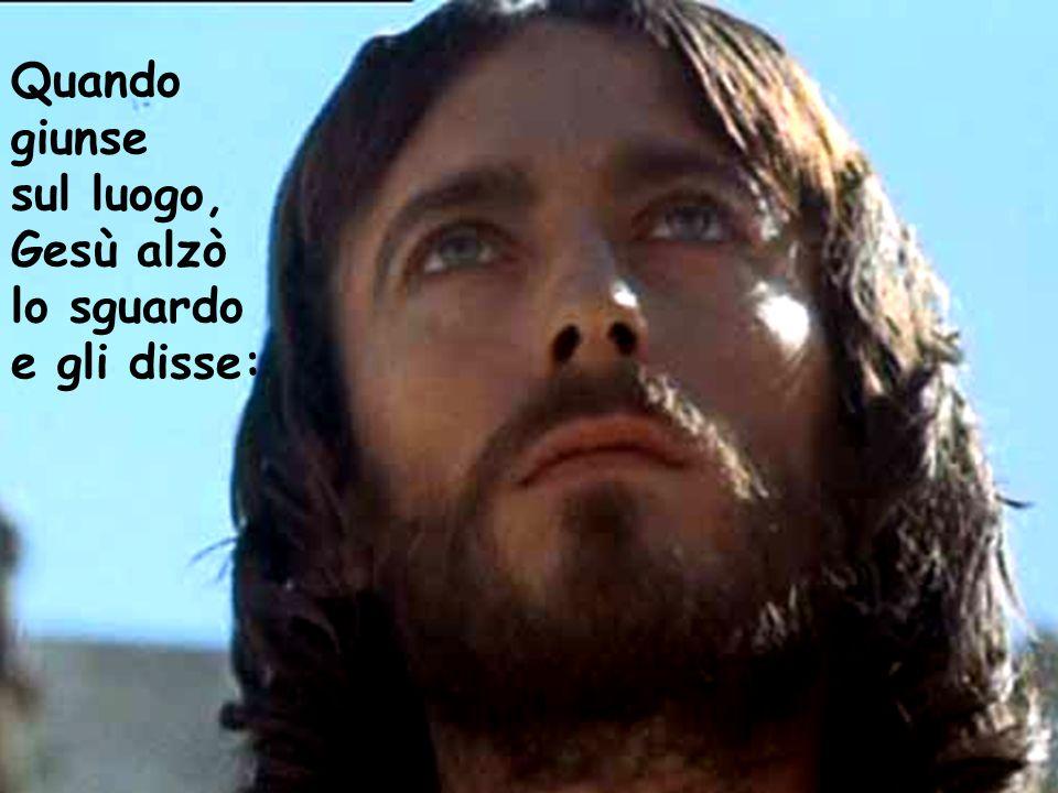 Quando giunse sul luogo, Gesù alzò lo sguardo e gli disse: Quando giunse sul luogo, Gesù alzò lo sguardo e gli disse: