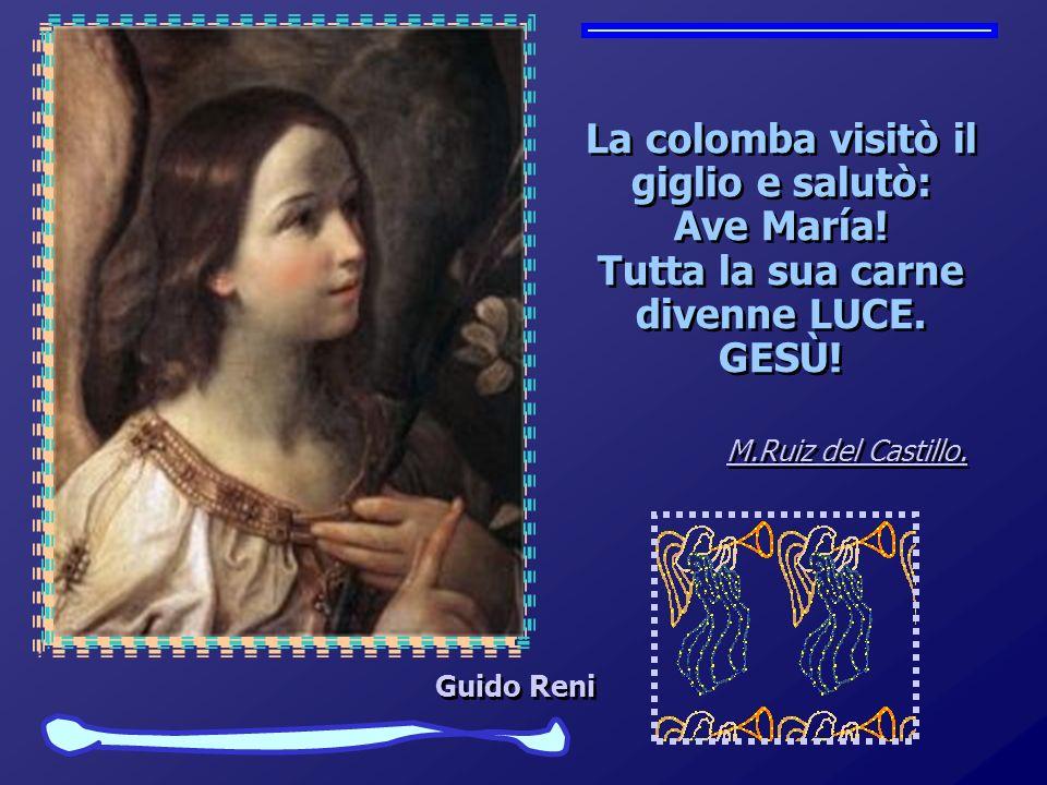 La colomba visitò il giglio e salutò: Ave María.Tutta la sua carne divenne LUCE.