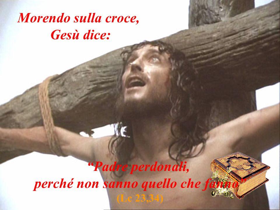 Morendo sulla croce, Gesù dice: Padre perdonali, perché non sanno quello che fanno (Lc 23,34)