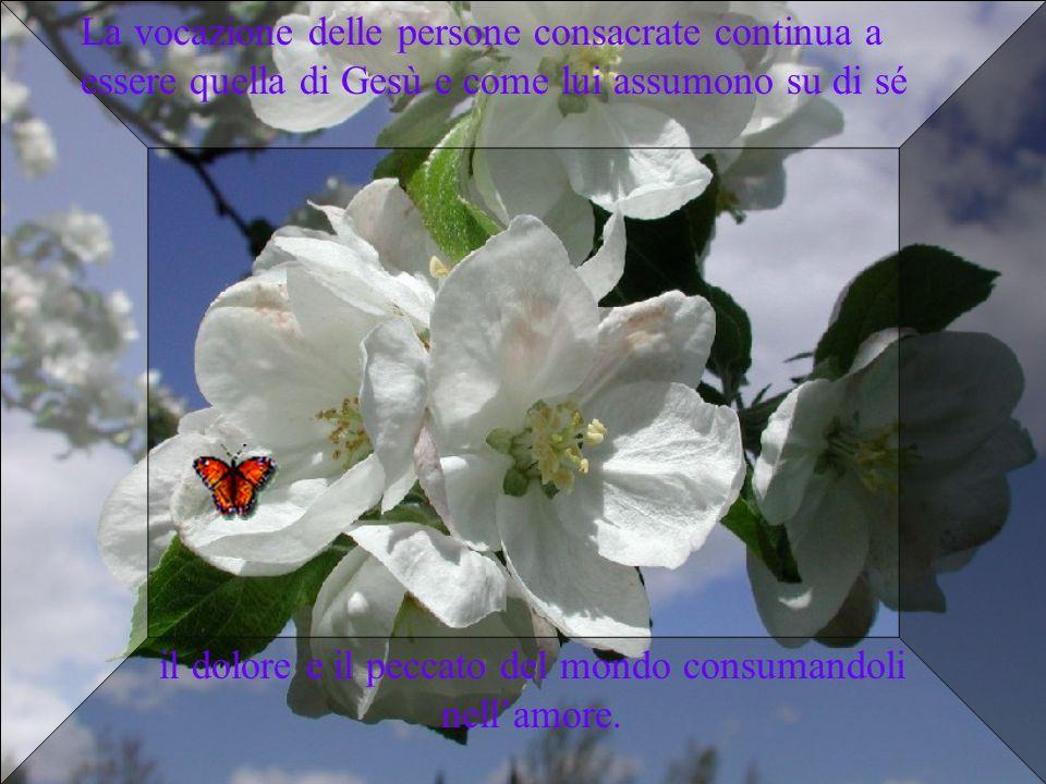 La vocazione delle persone consacrate continua a essere quella di Gesù e come lui assumono su di sé il dolore e il peccato del mondo consumandoli nell