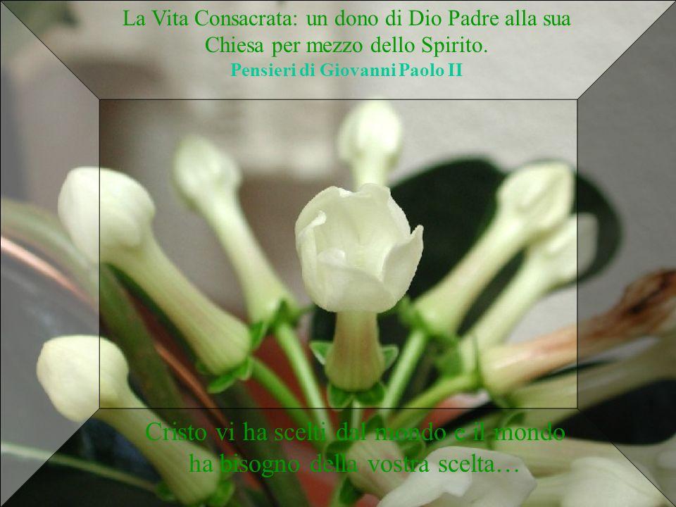 La Vita Consacrata: un dono di Dio Padre alla sua Chiesa per mezzo dello Spirito. Pensieri di Giovanni Paolo II Cristo vi ha scelti dal mondo e il mon