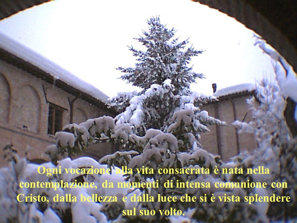 Ogni vocazione alla vita consacrata è nata nella contemplazione, da momenti di intensa comunione con Cristo, dalla bellezza e dalla luce che si è vist