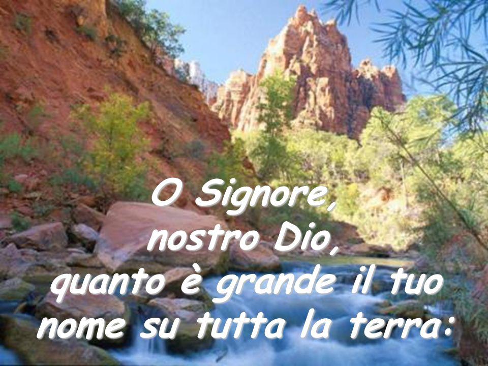 Salmo 8 O Signore, nostro Dio, quanto è grande il tuo nome su tutta la terra:
