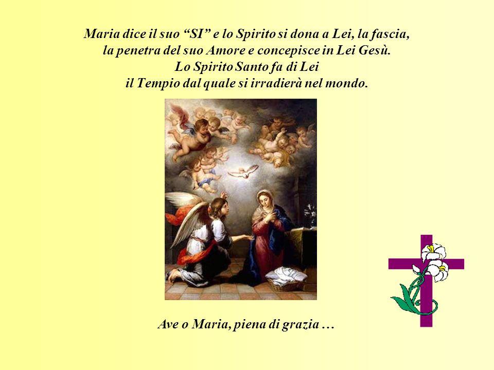 Maria dice il suo SI e lo Spirito si dona a Lei, la fascia, la penetra del suo Amore e concepisce in Lei Gesù. Lo Spirito Santo fa di Lei il Tempio da