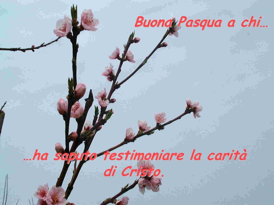 …ha saputo testimoniare la carità di Cristo.