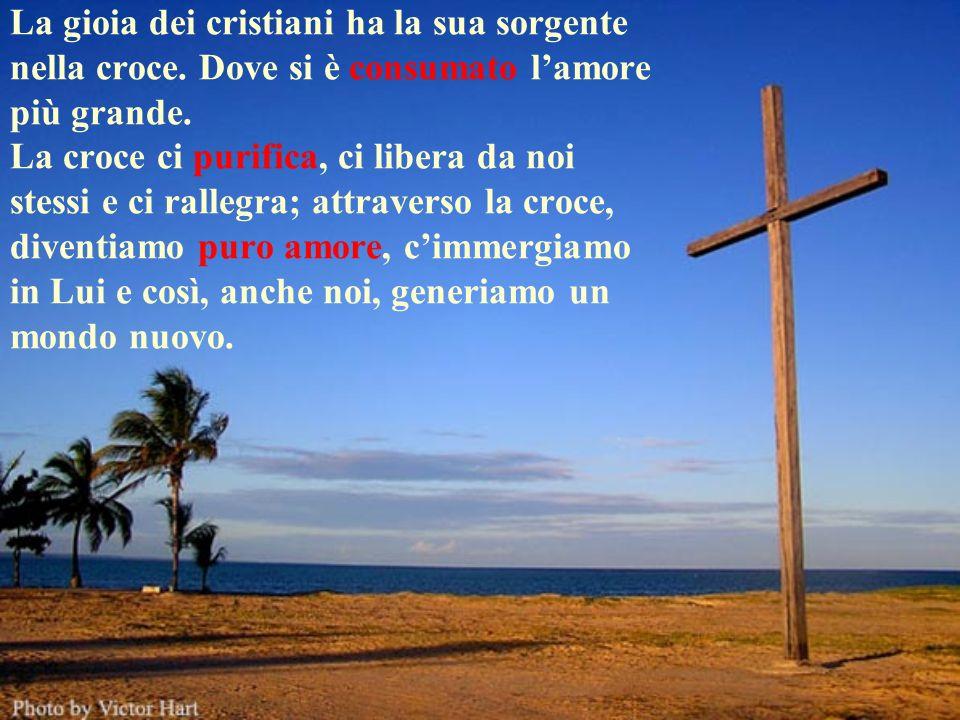 La gioia dei cristiani ha la sua sorgente nella croce. Dove si è consumato lamore più grande. La croce ci purifica, ci libera da noi stessi e ci ralle