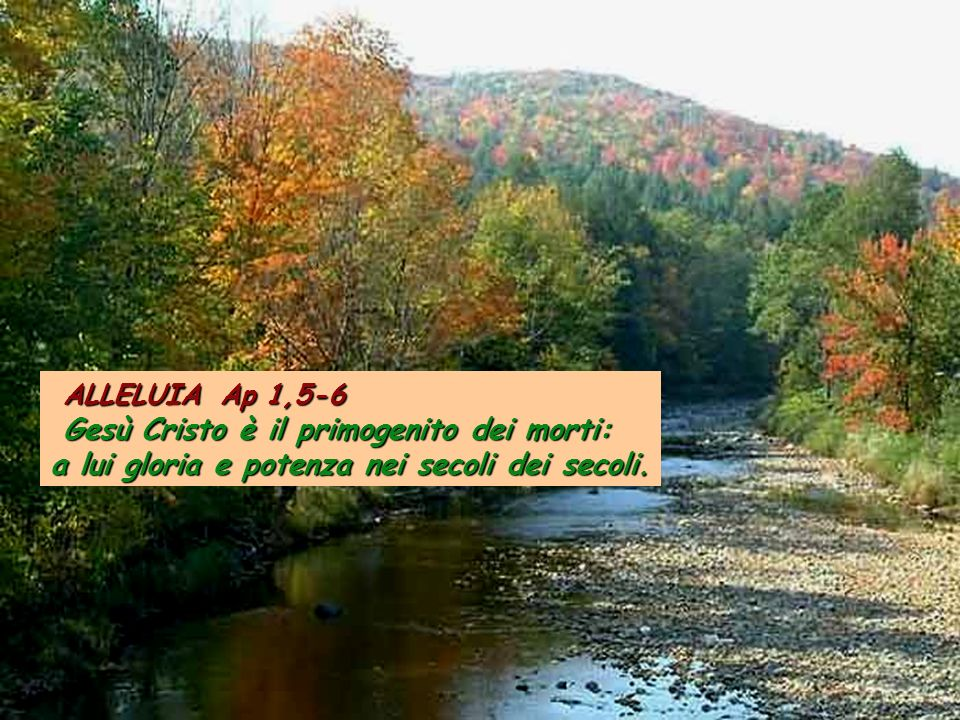 ALLELUIA Ap 1,5-6 ALLELUIA Ap 1,5-6 Gesù Cristo è il primogenito dei morti: Gesù Cristo è il primogenito dei morti: a lui gloria e potenza nei secoli