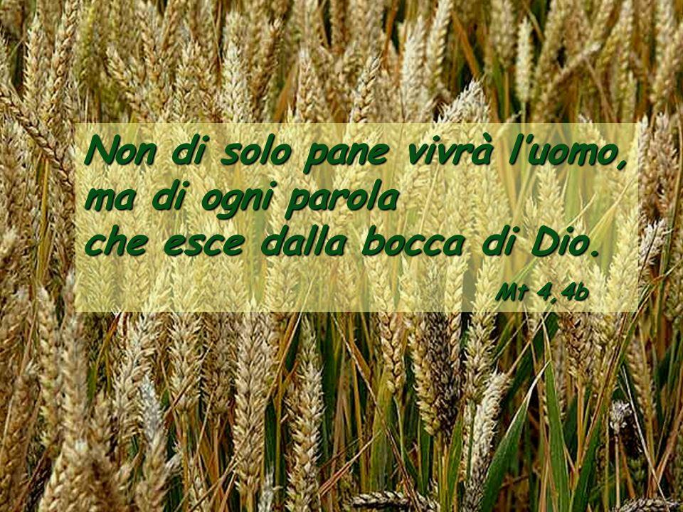Non di solo pane vivrà luomo, ma di ogni parola che esce dalla bocca di Dio. Mt 4,4b
