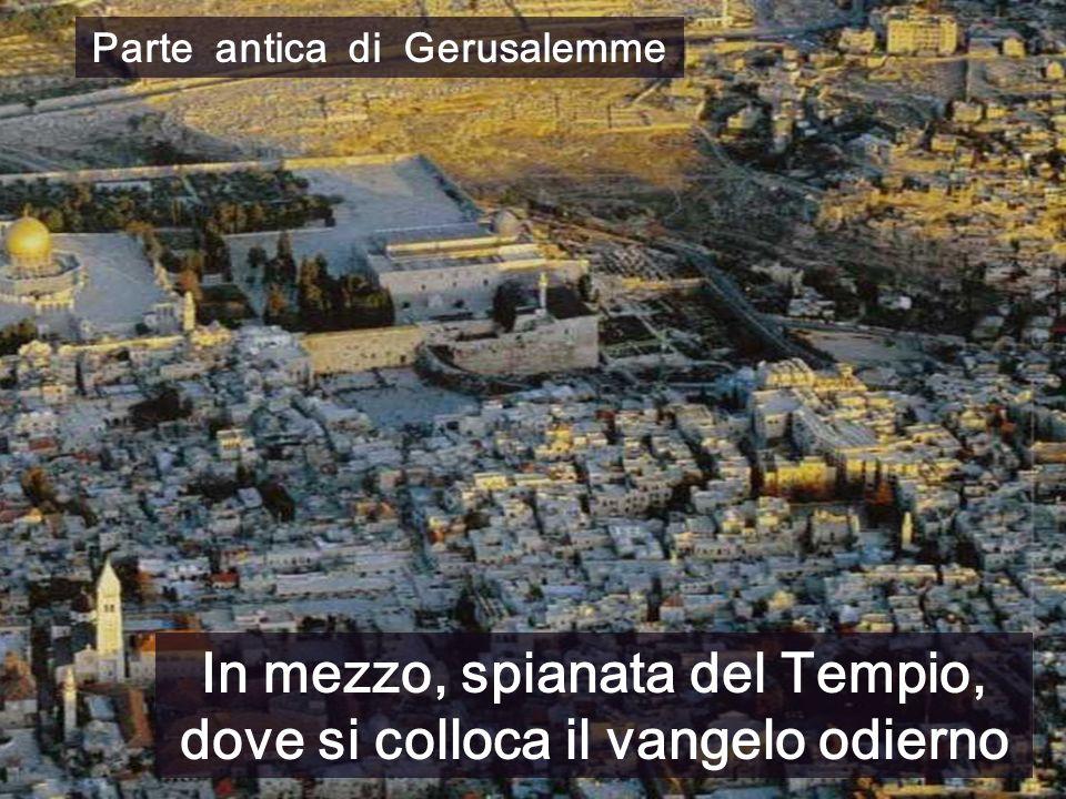 Parte antica di Gerusalemme In mezzo, spianata del Tempio, dove si colloca il vangelo odierno