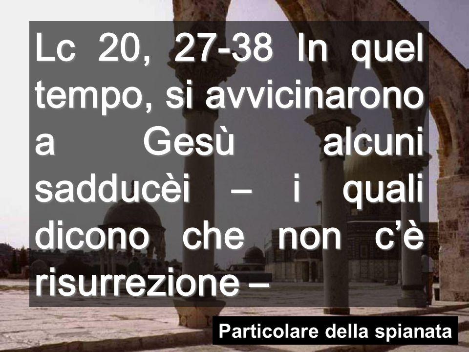 Lc 20, 27-38 In quel tempo, si avvicinarono a Gesù alcuni sadducèi – i quali dicono che non cè risurrezione – Particolare della spianata