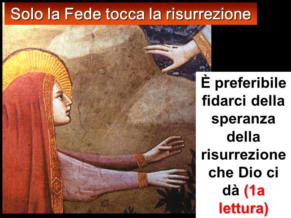 Solo la Fede tocca la risurrezione È preferibile fidarci della speranza della risurrezione che Dio ci dà ( (( (1a lettura)