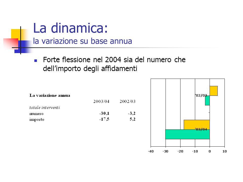 La dinamica: la variazione su base annua Forte flessione nel 2004 sia del numero che dellimporto degli affidamenti