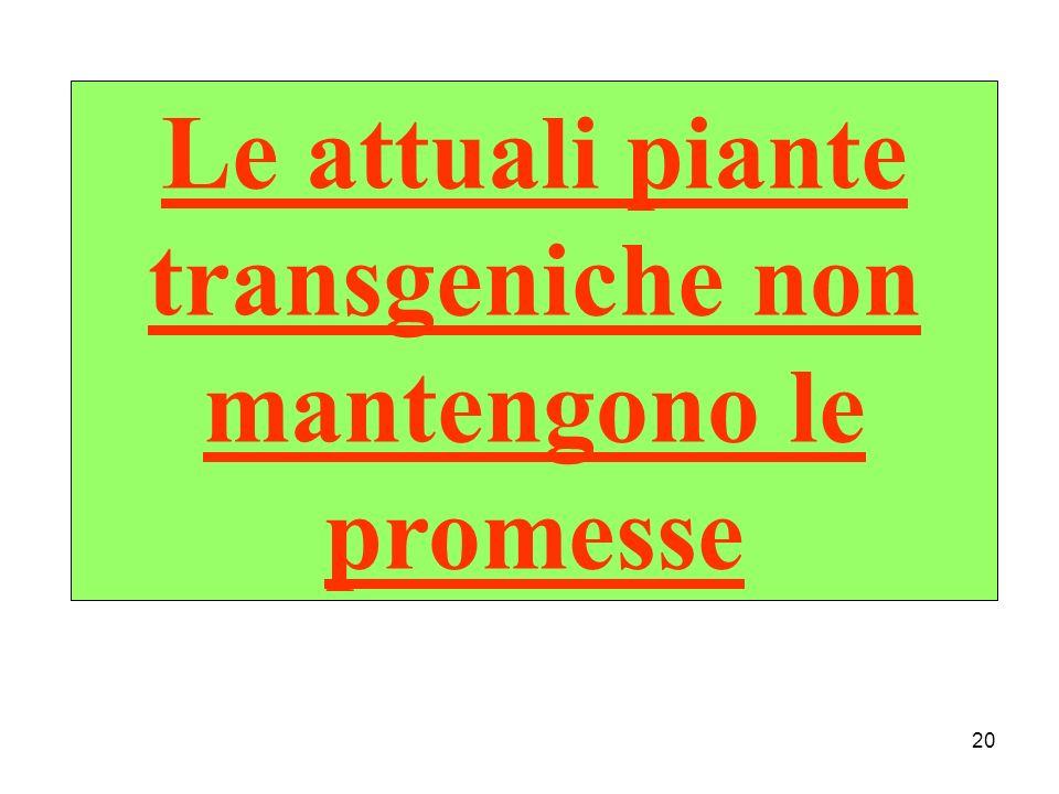 20 Le attuali piante transgeniche non mantengono le promesse