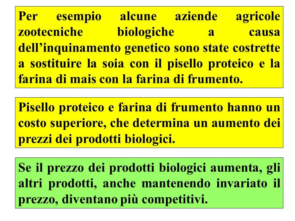56 Per esempio alcune aziende agricole zootecniche biologiche a causa dellinquinamento genetico sono state costrette a sostituire la soia con il pisello proteico e la farina di mais con la farina di frumento.