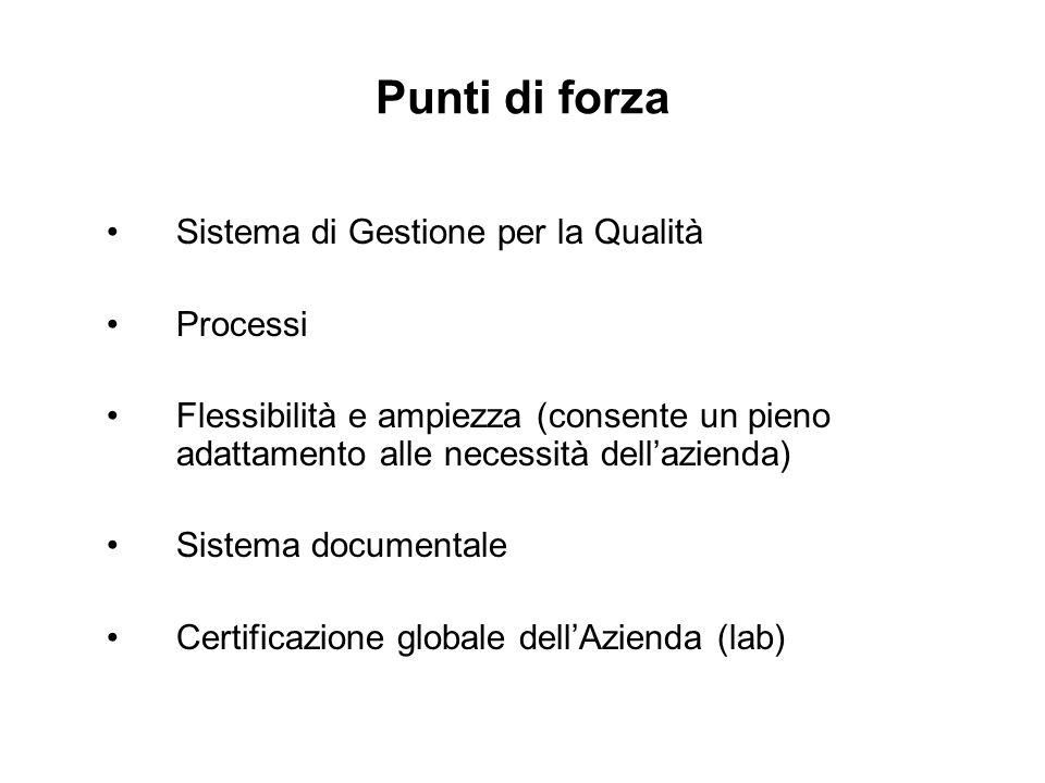 Punti di forza Sistema di Gestione per la Qualità Processi Flessibilità e ampiezza (consente un pieno adattamento alle necessità dellazienda) Sistema