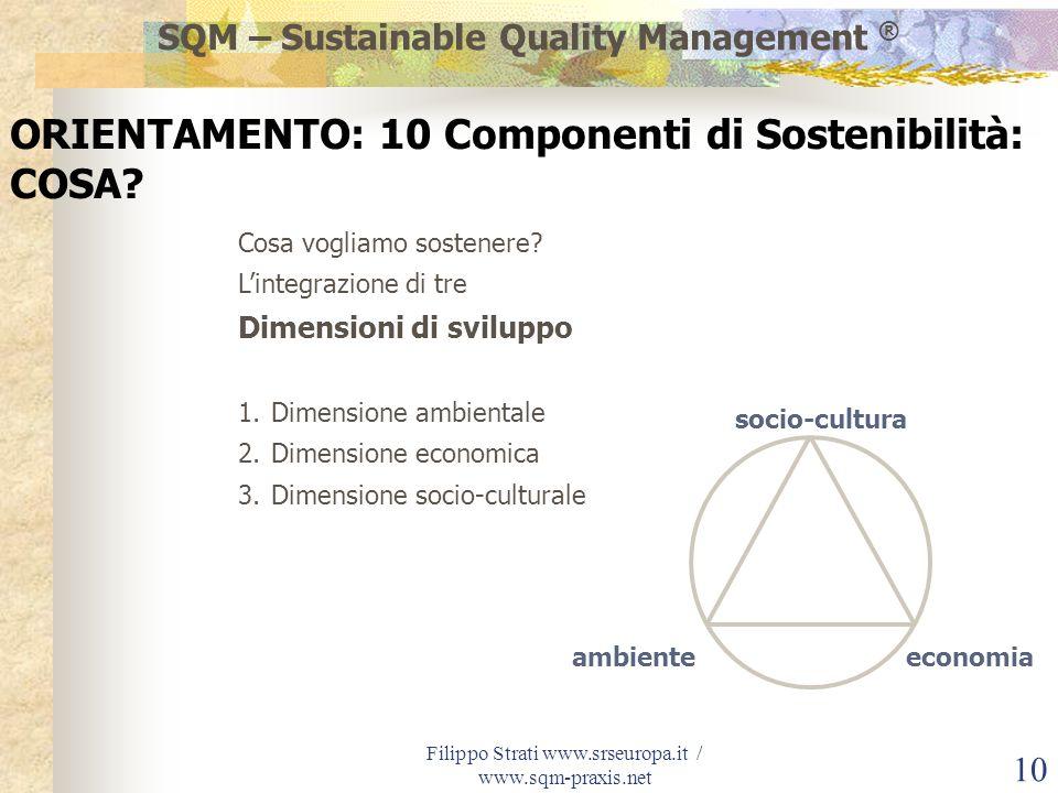 Filippo Strati www.srseuropa.it / www.sqm-praxis.net 10 Cosa vogliamo sostenere? Lintegrazione di tre Dimensioni di sviluppo 1.Dimensione ambientale 2