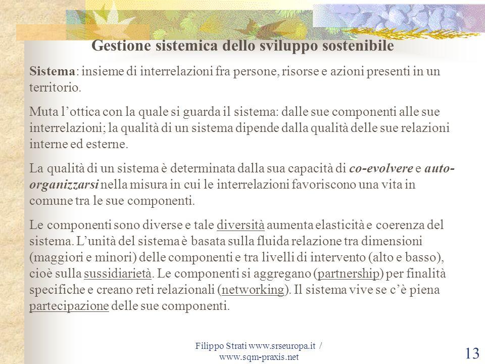 Filippo Strati www.srseuropa.it / www.sqm-praxis.net 13 Gestione sistemica dello sviluppo sostenibile Sistema: insieme di interrelazioni fra persone,