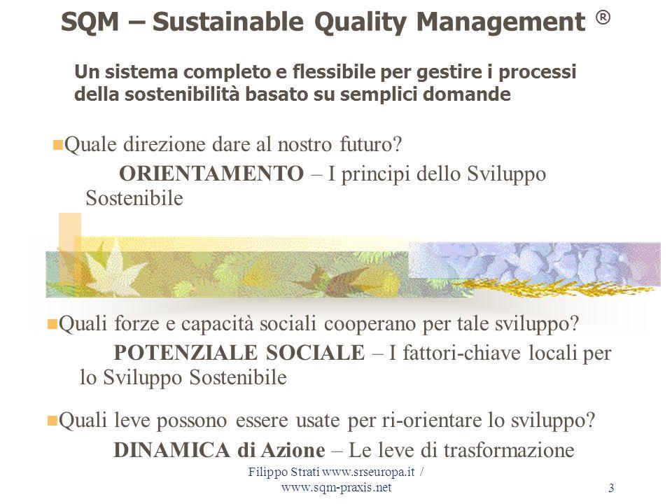 Filippo Strati www.srseuropa.it / www.sqm-praxis.net 24 SQM – un percorso circolare ed evolutivo per: a) valutare la situazione attuale b) individuare strategie innovatrici per il futuro c) monitorare i percorsi di attuazione
