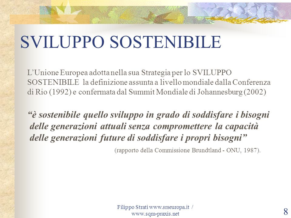 Filippo Strati www.srseuropa.it / www.sqm-praxis.net 8 LUnione Europea adotta nella sua Strategia per lo SVILUPPO SOSTENIBILE la definizione assunta a