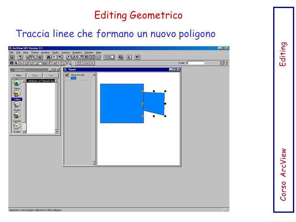 Traccia linee che formano un nuovo poligono Corso ArcView Editing Editing Geometrico