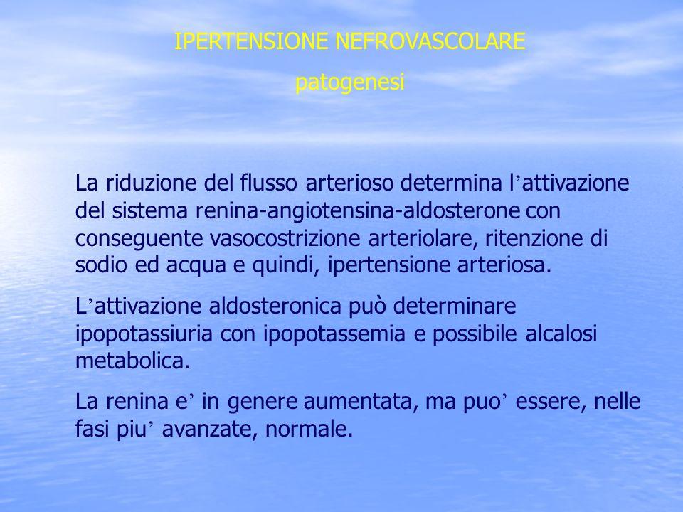 IPERTENSIONE NEFROVASCOLARE patogenesi La riduzione del flusso arterioso determina l attivazione del sistema renina-angiotensina-aldosterone con conse
