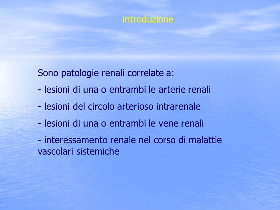 introduzione Sono patologie renali correlate a: - lesioni di una o entrambi le arterie renali - lesioni del circolo arterioso intrarenale - lesioni di