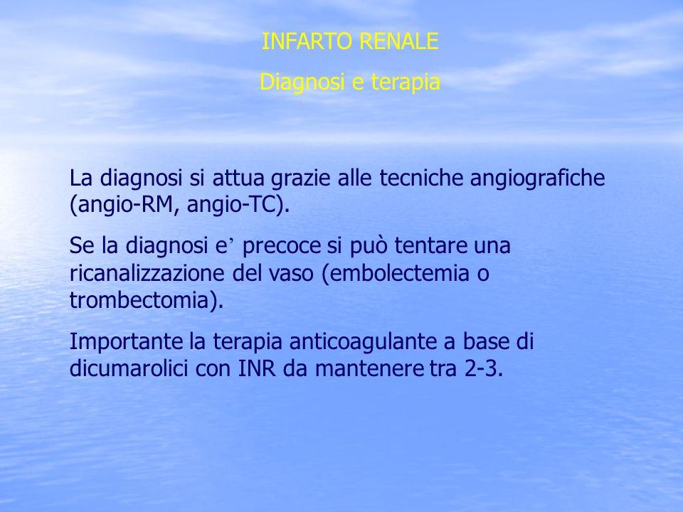 INFARTO RENALE Diagnosi e terapia La diagnosi si attua grazie alle tecniche angiografiche (angio-RM, angio-TC). Se la diagnosi e precoce si può tentar