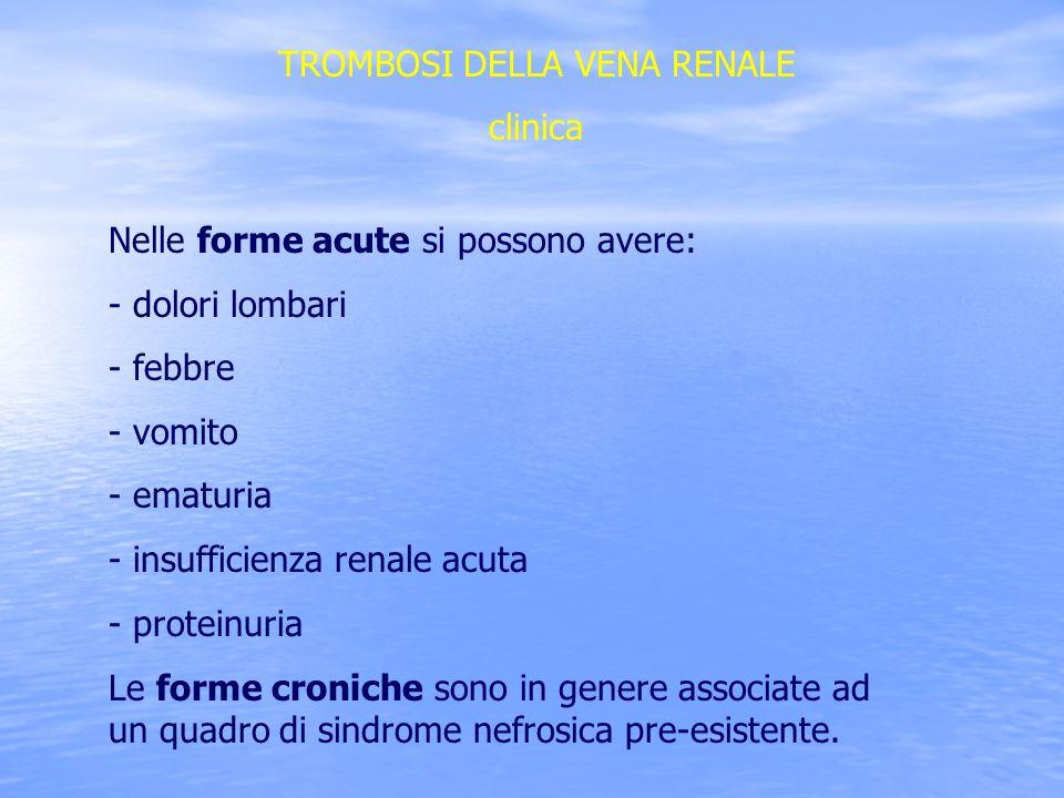 TROMBOSI DELLA VENA RENALE clinica Nelle forme acute si possono avere: - dolori lombari - febbre - vomito - ematuria - insufficienza renale acuta - pr