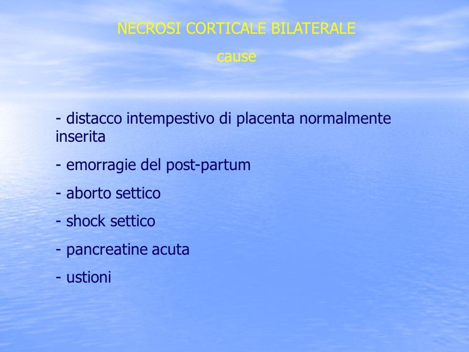 NECROSI CORTICALE BILATERALE cause - distacco intempestivo di placenta normalmente inserita - emorragie del post-partum - aborto settico - shock setti