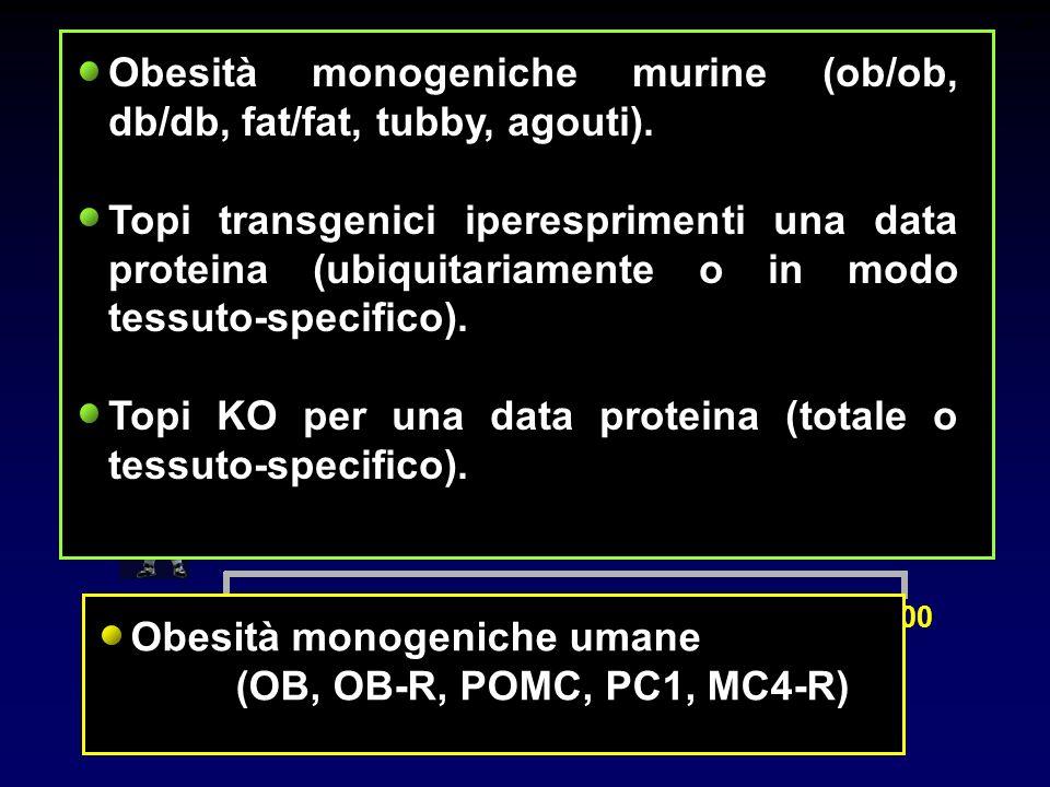 0100 Attualità: gli ultimi 10 anni... Obesità monogeniche murine (ob/ob, db/db, fat/fat, tubby, agouti). Topi transgenici iperesprimenti una data prot