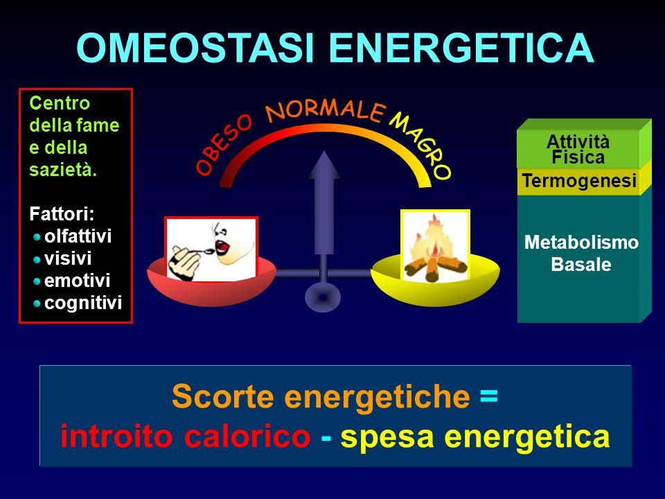 Centro della fame e della sazietà. Fattori: olfattivi visivi emotivi cognitivi Metabolismo Basale Termogenesi Attività Fisica OMEOSTASI ENERGETICA Sco