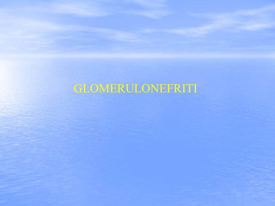 2 GLOMERULONEFRITI PRIMITIVE introduzione Le glomerulonefriti sono un gruppo di malattie renali caratterizzate da processi infiammatori che colpiscono, in prima istanza i glomeruli.