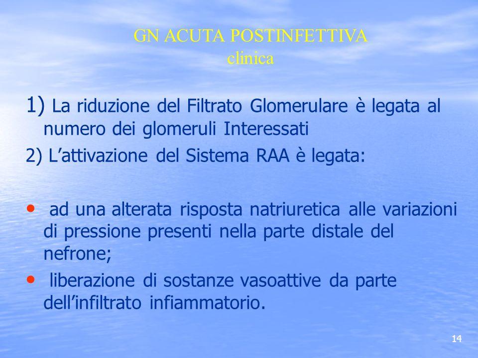 14 1) La riduzione del Filtrato Glomerulare è legata al numero dei glomeruli Interessati 2) Lattivazione del Sistema RAA è legata: ad una alterata ris