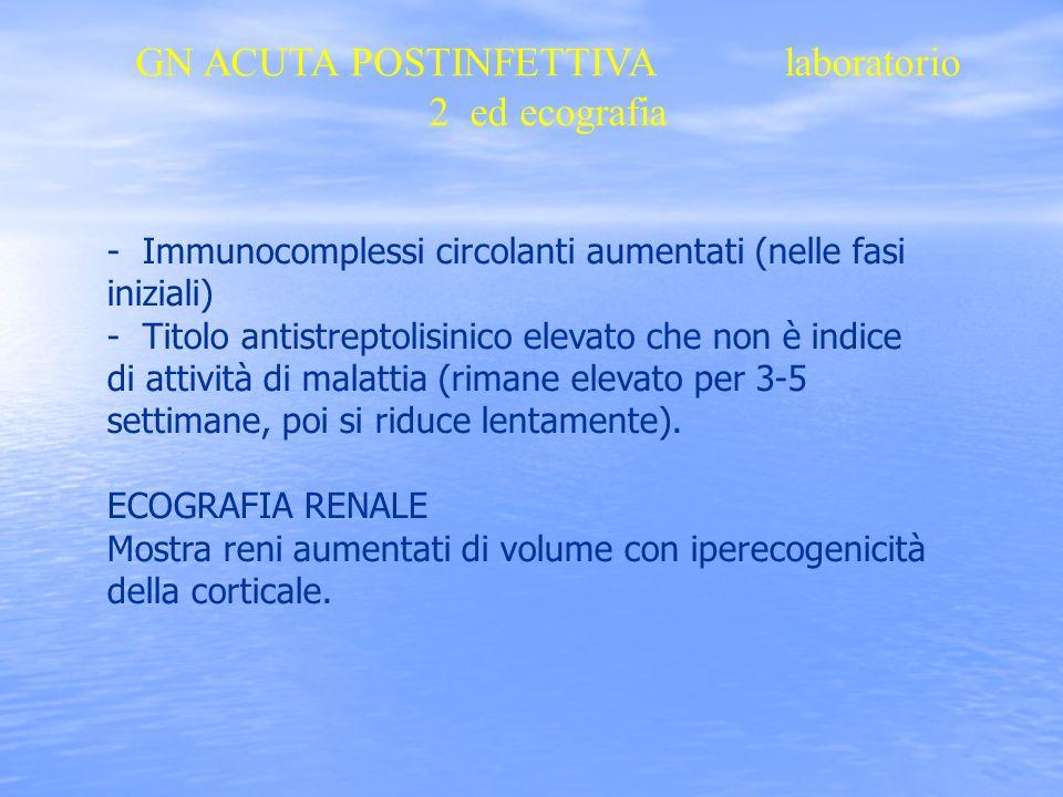 GN ACUTA POSTINFETTIVA laboratorio 2 ed ecografia - Immunocomplessi circolanti aumentati (nelle fasi iniziali) - Titolo antistreptolisinico elevato ch