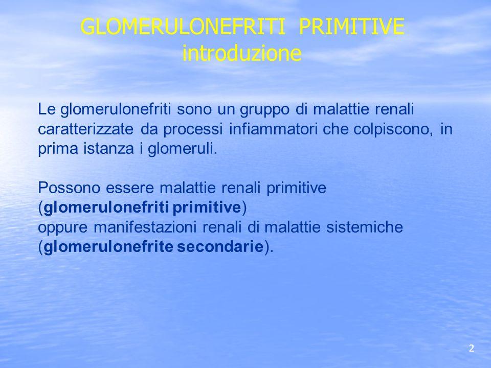 GN Membranosa Istologia 2 II stadio Ispessimento diffuso ed uniforme delle pareti dei capillari glomerulari.