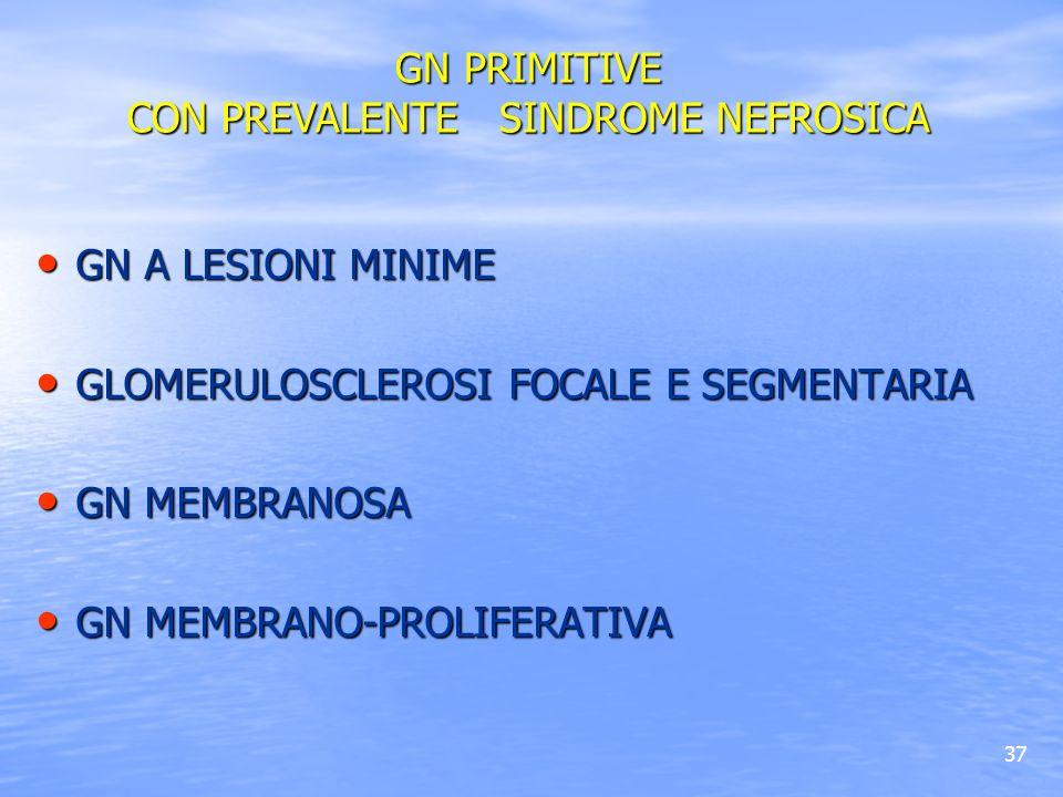 37 GN A LESIONI MINIME GN A LESIONI MINIME GLOMERULOSCLEROSI FOCALE E SEGMENTARIA GLOMERULOSCLEROSI FOCALE E SEGMENTARIA GN MEMBRANOSA GN MEMBRANOSA G
