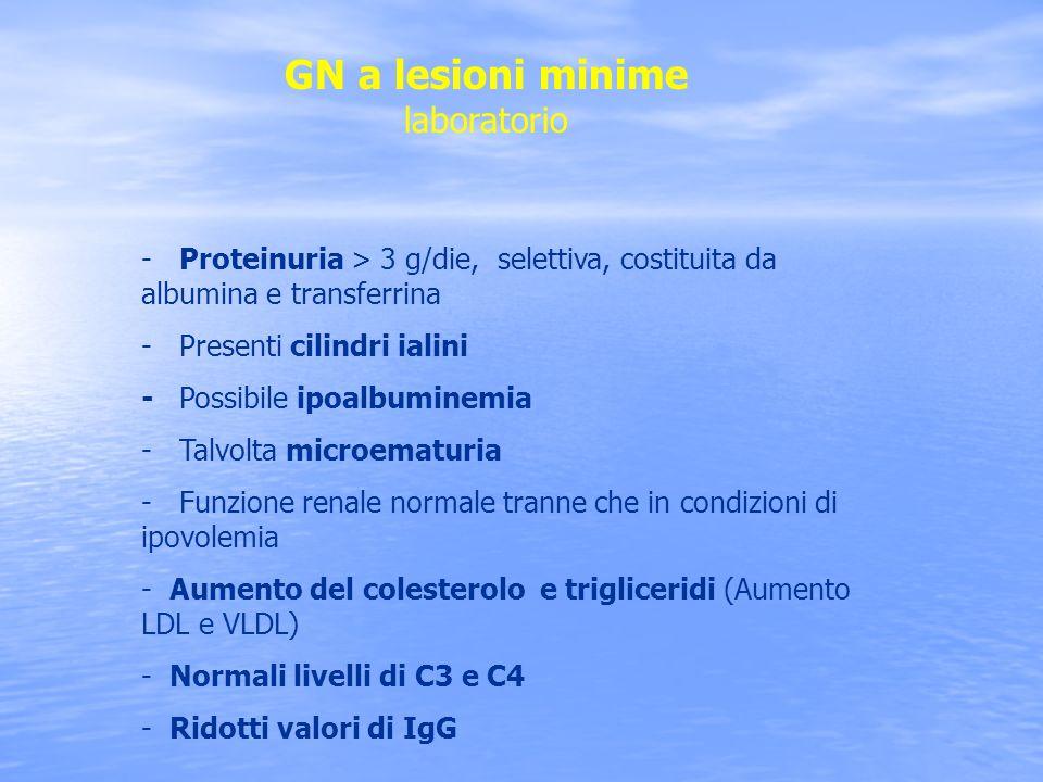 GN a lesioni minime laboratorio - Proteinuria > 3 g/die, selettiva, costituita da albumina e transferrina - Presenti cilindri ialini - Possibile ipoal