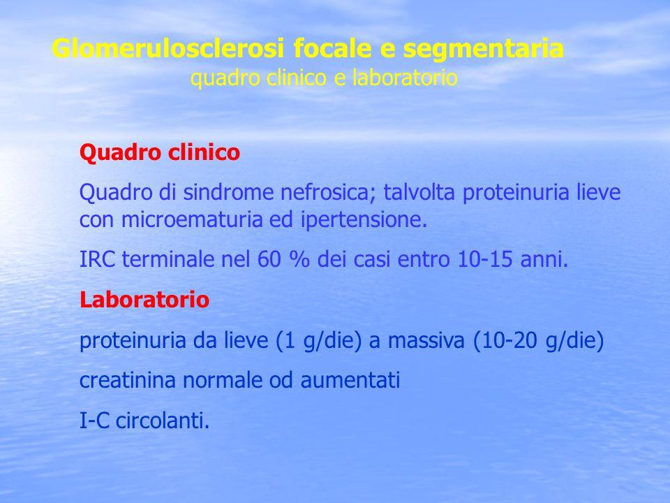 Glomerulosclerosi focale e segmentaria quadro clinico e laboratorio Quadro clinico Quadro di sindrome nefrosica; talvolta proteinuria lieve con microe