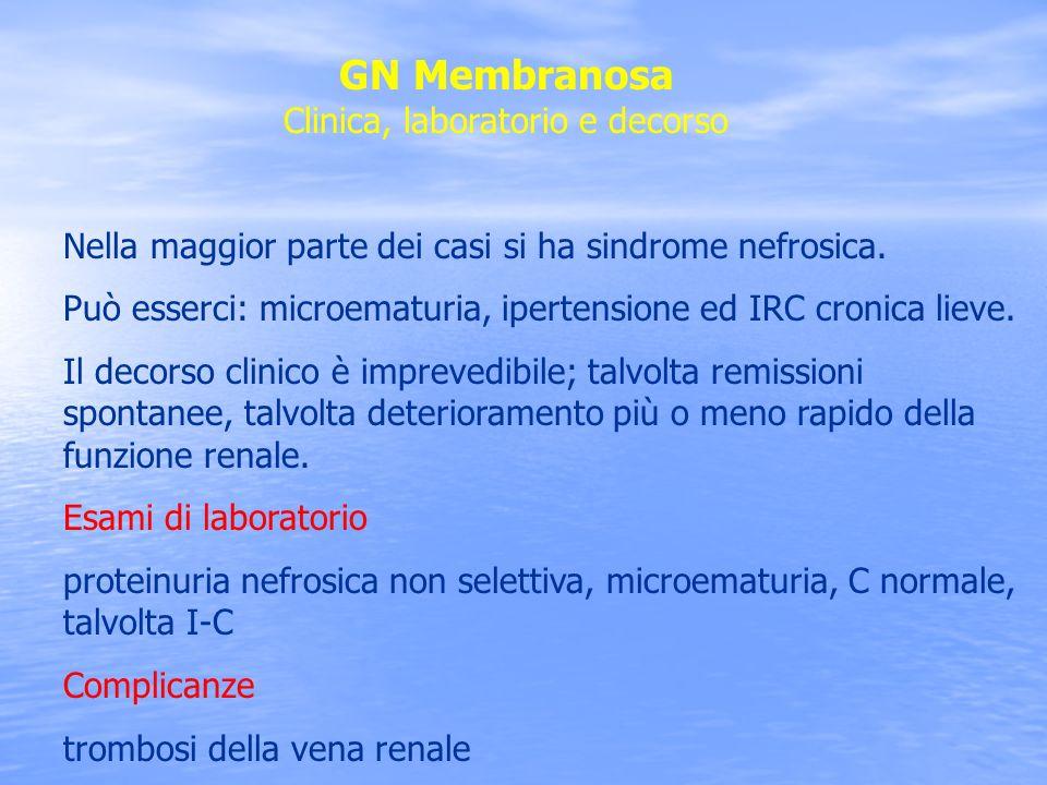 GN Membranosa Clinica, laboratorio e decorso Nella maggior parte dei casi si ha sindrome nefrosica. Può esserci: microematuria, ipertensione ed IRC cr