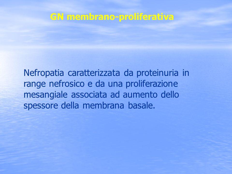 GN membrano-proliferativa Nefropatia caratterizzata da proteinuria in range nefrosico e da una proliferazione mesangiale associata ad aumento dello sp