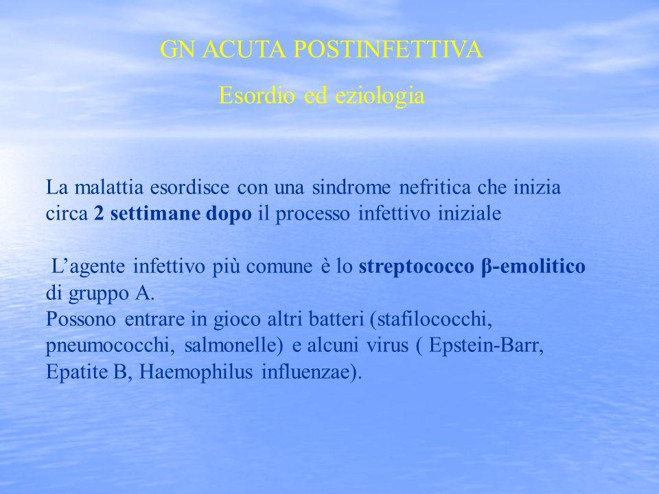9 Gli antigeni nefritogeni dello streptococco β-emolitico sono rappresentati da - PROTEINA M - ENDOSTREPTOSINA - ESOTOSSINA B (una proteinasi) Nei pazienti con malattia in atto ci sono alti livelli sierici di ANTICORPI ANTISTREPTOSINA ANTIPROTEINASI STREPTOCOCCICA Le sedi più frequenti dellinfezione iniziale sono - FARINGE - CUTE ( derma).