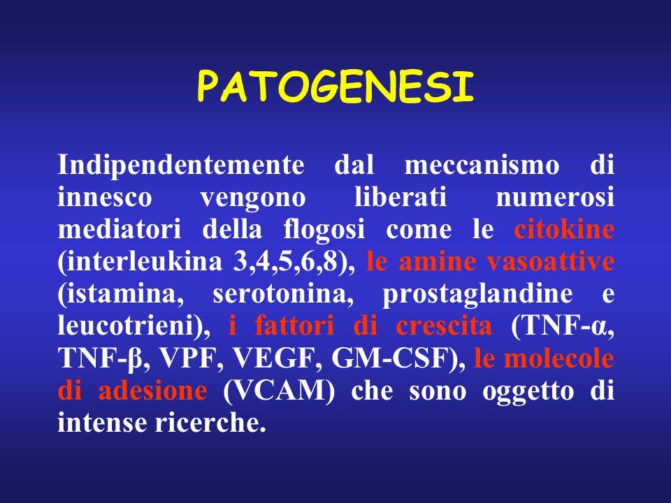 PATOGENESI Indipendentemente dal meccanismo di innesco vengono liberati numerosi mediatori della flogosi come le citokine (interleukina 3,4,5,6,8), le