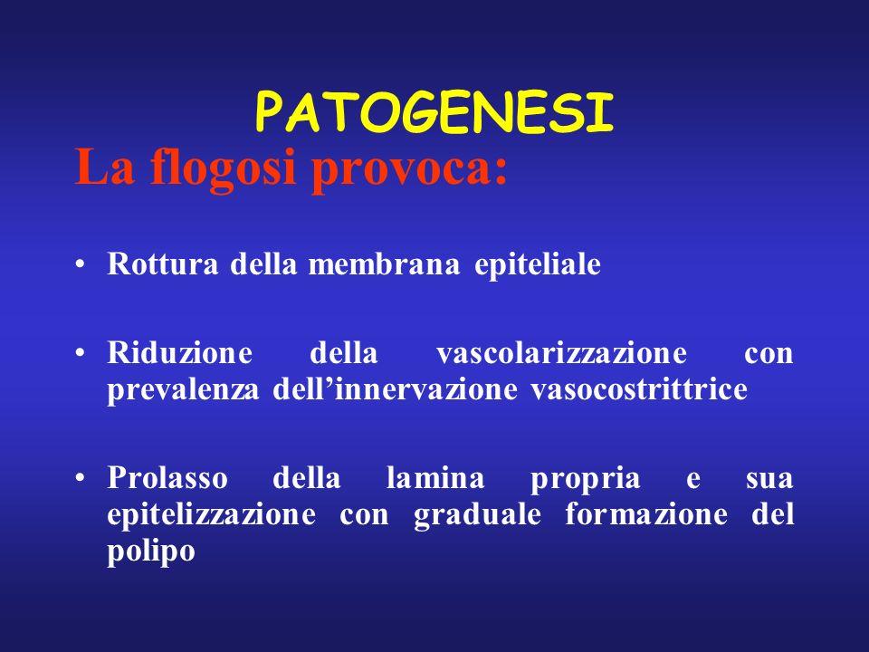 PATOGENESI La flogosi provoca: Rottura della membrana epiteliale Riduzione della vascolarizzazione con prevalenza dellinnervazione vasocostrittrice Pr